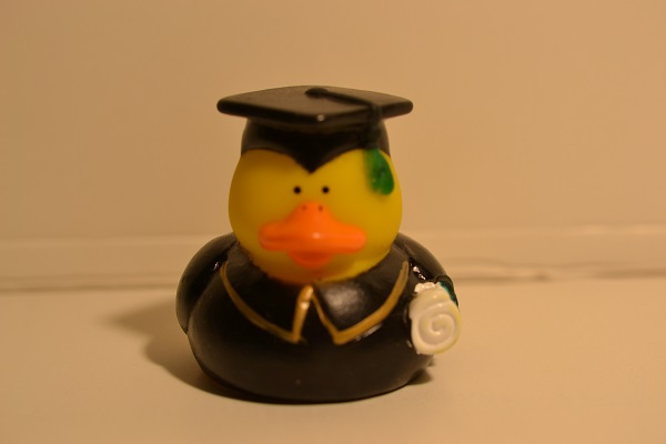 College Graduation duck