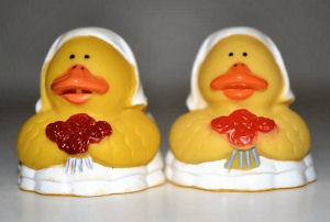Bride and Bride Ducks