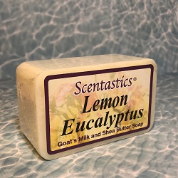 soap, Lemon Eucalyptus